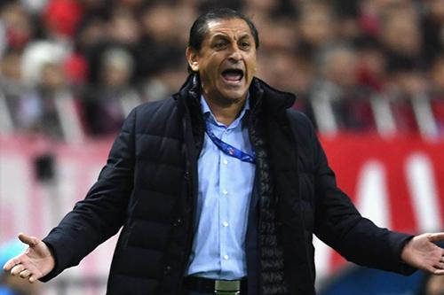 """مدرب بيراميدز يعلق على """"مفاوضات مزعومة """"بين إدارة الفريق ورونار"""